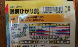 耐病ひかり蕪,宮城県沿岸部,寒冷地,青い部分,初め,トンネル栽培