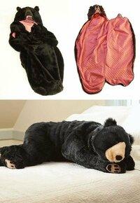 山小屋代金を節約したいので 登山道脇で寝袋で仮眠しようと計画中です。 とりあえず画像のような寝袋を買ったのですが、あと、他に何か持って行ったほうが良い物とか、気を付けることはありますでしょうか?