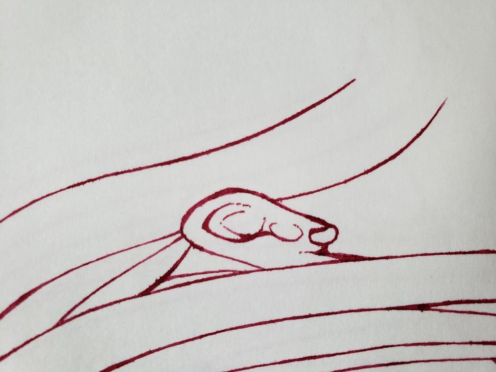 万年筆のインクが滲みにくい用紙をご存知の方がいらしたら教えて頂きたいです。 画像はDE ATRAMENTISのインクをKMKケント紙に描いた物なのですが物凄く滲んでしまって困っています。 よく使う W&NのインクはKMKケント紙でも滲まないのですが…画像のようにKMKケント紙だと滲んでしまうインクもいくつか所有しているので…。