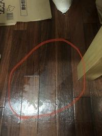 朝起きたらゴミ袋から生ゴミの汁が漏れていて袋の底が濡れていました。 その影響でクッションフロアが変色してしまいました。 気づいた時にすぐ拭いたのですが変わりません。 どうすれば戻り ますか? (変色...