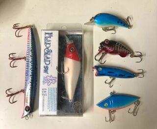 ルアー,エギ,普段ルアー釣り,釣り具,一式,フラップスラップひいらぎ,ブルーギル