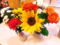 お花の名前を教えてください。 ひまわりだけが分かります