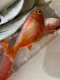 この魚は何ですか?名前と食べ方を教えてください。