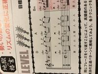 ギタータブ譜についての質問です  ギターのタブ譜にこのような装飾音がついていますがこれは何の意味があるのでしょうか?八分音符分早く入ると言う意味なのかなと思いましたが、教則本のcdの 模範演奏を聞いて...