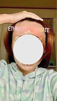 私の顔の形は何型ですか?? 自己診断してみてもイマイチ面長なのかベース型なのか丸型なのかわからなく質問させていただきました(-_-;) 客観的な意見をお願いします