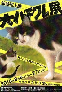 ハチワレ猫さんの大ハチワレ展は 新型コロナウイルス感染拡大防止から 中止になり、悲しいですよね?