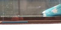 全面ガラス水槽について質問です テトラ (Tetra) 水槽 オールグラスアクアリウム GA-520F 水槽底面四隅に耐震ジェルを貼りました すると台と水槽に隙間ができます  そのまま水を入れて砂利 をいれると、 そ...