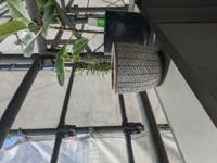観葉植物の直射日光について 現在外壁工事でうすめのネットがはられているのですが、「直射日光をあてている」という扱いになってまいますか? 結構日差しがあたってる気がしてますが直射になるのでしょうか 直射にならないなら他の子もベランダにだしてあげたく。 写真はローズマリーとアルテシマ、他にユッカ、モンステラ、サンセベリア、パキラさんがいます