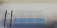 プリンター キャノンMG6700です。 印刷の不具合です。ノズルチェックパターンを印刷すると画像の様に黒だけ変なパターンになります。強力クリーニングや洗浄カートリッジを使いましたが直りません。印刷すると黒がかすれたり膨らんだりします。 何が原因でしょうか?