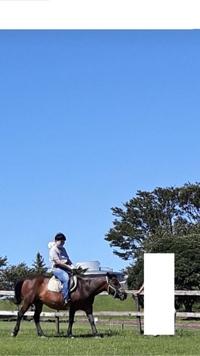乗馬しました。 様になってますよね? 俺カッコイイですよね?https://detail.chiebukuro.yahoo.co.jp/qa/question_detail/q14229318999