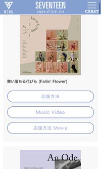 セブチの掛け声はこちらのSEVENTEEN日本の公式サイトに載ってるもので全てですか?またMyMyなどのカップリング?のような歌には掛け声はないのでしょうか?