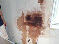 屋根からの雨漏りで築2年の一軒家の2階洗面所のクロスが浮いてきました。 ハウスメーカーに連絡してクロスを剥がしてもらったところ、下地がボードでは無くてコンパネだったんですが黒く変色しておりかなり湿ってました。雨漏り原因の屋根補修からは1か月以上経っております。 画像の感じを見てどうゆう修理をするべきでしょうか?専門家の方ご教授願います。 ハウスメーカーがグダグタなんで結構揉めてます。