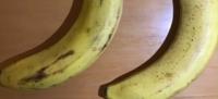 バナナが熟すと出来る斑点はシュガースポットといいますよね。ですが斑点ではなくシミのように広い範囲で黒くなっている部分はなんでしょうか? この画像で言う左のバナナです。シュガースポットは右のほうが多く...
