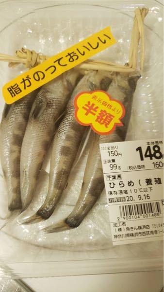 これはなんの魚ですか?
