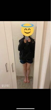 脚が太くてもショーパンを履いてもいいか悩んでいます。見ての通り脚に隙間はないですし、膝肉もたくさんあります。やっぱり見苦しいのでやめた方がいいでしょうか。
