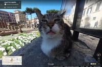 Googleストリートビューの大きい猫の顔のやつはまだありますか?