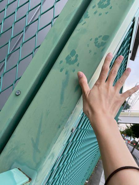 出来るだけ早く知りたいです!! フェンスに逆さ向きの小さい手形?のようなものがあったのですが、サルですかね?? なんの手形なのか気になるので教えて下さい(><)