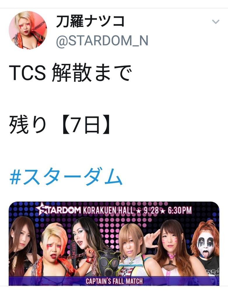 9.28、いよいよTCSが解散しますね。 皆さんそれぞれの胸中は? TCS、大江戸隊どちらのファンの方にも伺います。
