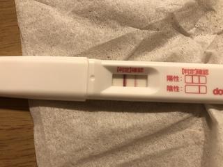 双子 の 生理 妊娠 きた に