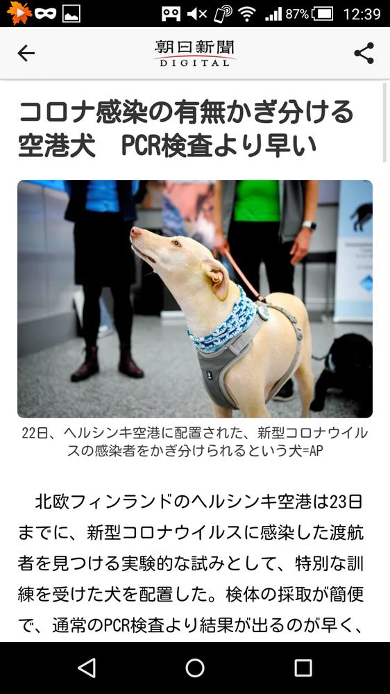 犬より鼻が利いて訓練できる動物はいますか