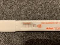 高温期12日目 排卵検査薬