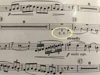 オーボエの楽譜です。 途中にE.Hと書かれているのですが これはイングリッシュホルンで吹くということですか?