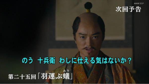 NHK大河ドラマ《麒麟がくる》 第二十五回「羽運ぶ蟻(あり)」の感想は?