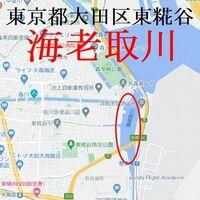 今日午前に東京都大田区東糀谷の海老取川に行きました。 川岸にいる釣り人に訊くとハゼが釣れるとのことでした。 ・ ここで質問です。 東京都大田区東糀谷の海老取川でとれたハゼなどの魚は食べても身体には害はないのでしょうか。 ・ いかがでしょうか。