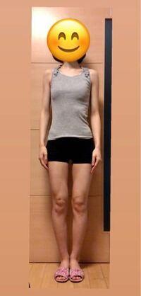 身長167センチ、体重48キロの20歳女です。写真から体型を見ていただきたいです。 足が太いことが悩みですが、どの程度太く見えるでしょうか? そして、全体に貧相に見えますか?  運動をしようか、太ろうかと考え...