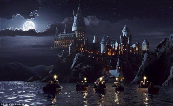 ホグワーツ魔法魔術学校って、11歳の頃にホグワーツから入学許可を持ったフクロウが来なければもう諦めるしかないんでしょうか?