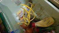 冷蔵庫を見てみたら玉ねぎから黄色い葉のようなものが生えていました。 毒とかないか怖いです。 誰か教えて頂けないでしょうか?