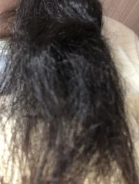 髪の毛をくしでとかしても画像のように ボサボサになって全然滑らかな髪に なりません。 どうしたら髪がボサボサにならずにすみますか? 私が考える原因は去年一度も髪をカットしてないからと夏だけ自然乾燥だと思うのですがやはりその原因でしょうか?