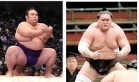 大相撲11月場所  優勝候補は早くも 大関:貴景勝と小結:照ノ富士 に、絞られたか・・・?