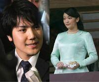 秋篠宮眞子さまと小室さんはいつごろご結婚 されるのですか?
