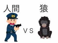 チンパンジー.ブルーノ事件や猿の惑星(ジェネシス)を見て思ったんですが結局戦ったらどっちが勝つのですか!? 人間vs猿!!