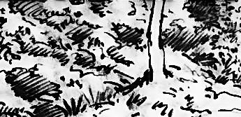 フィリックシュ氏のように、空想で風景画描けないヒトは、実際の風景も描けませんか? そこいらの草木も描けませんか?
