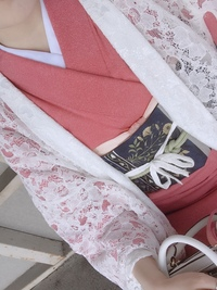江戸小紋と帯の格  ネットで気に入った色味の江戸小紋があったので買いました。 手持ちの洒落袋に合わせて着たいのですが、この組み合わせは着物と帯の格のバランスとして差し支え無いでしょうか?  また、この組み合わせでは画像のレース羽織は合わせない方が宜しいですか?  何卒ご教示の程よろしくお願いいたします。