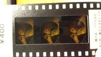 ジブリ美術館でもらったフィルムチケットですがどの作品のものかわかりません。ナウシカの用な気もするのですが…。 わかるかたいらっしゃったら教えて下さい。 作品のどのあたりのシーンなのかも教えていただけたら嬉しいです❗️