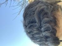 中学生男子なのですが、見ての通り酷いくせ毛です この髪型を変えたいです 似合う髪型はないですかね… 縮毛矯正やストレートパーマをかけて真っ直ぐにしてもいいのですが、友達や知り合いに変わった?とかあん...