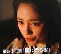 NHK大河ドラマ《麒麟がくる》 第四十三回「闇に光る樹」の感想は?