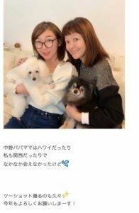 """峯岸みなみ、KAZMAX薬物逮捕で再燃!? 「AKB48初期メンと怪しげ人脈」の危険な関係 https://www.excite.co.jp/news/article/Cyzo_222006/ 11月11日に峯岸みなみ薬物疑惑報道  12月8日にAKBを卒業することを発表し、更に疑惑が深まった  12月18日「ある芸能プロ幹部」によりデマが流された  """"不可解処分""""元アイドルA、夫と一緒に「..."""