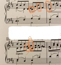 初心者の独学です。 この丸の部分たちは 和音で弾くのですか? それとも順番ですか?  全音出版のパッヘルベルのカノン です* また、全音のトゥーランドットの誰も寝てはならぬが和音が多すぎて指が届かなくて 左手でも右の和音に添えるのが無理なのですが 、これは 左の和音が無理な時は、左から順番に左の和音を素早く弾いて、右手の和音だと右から左へ(低い方へ 順番に素早く弾くで和音を補うで合って...