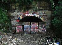 心霊スポットとして有名な福岡の「旧犬鳴トンネル」ですが、向こう側がどうしても見てみたいです。 衛生写真などで見ることはできますか? Googleアースなどで見られるなら方法を教えていただきたいです。  有名...