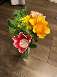 チューリップの切り花ですが、今の時間すごく開いて、朝とかは閉じてます。 どういうリズムなのでしょうか?