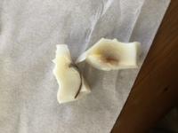 ゆで卵を作ったら白身に写真のようなモノがありました。これはなんですか? 卵をゆでて、白身、黄身を分かれていたら発見しました。虫でしょうか?