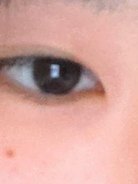 この目って蒙古襞ありますかね、、、?