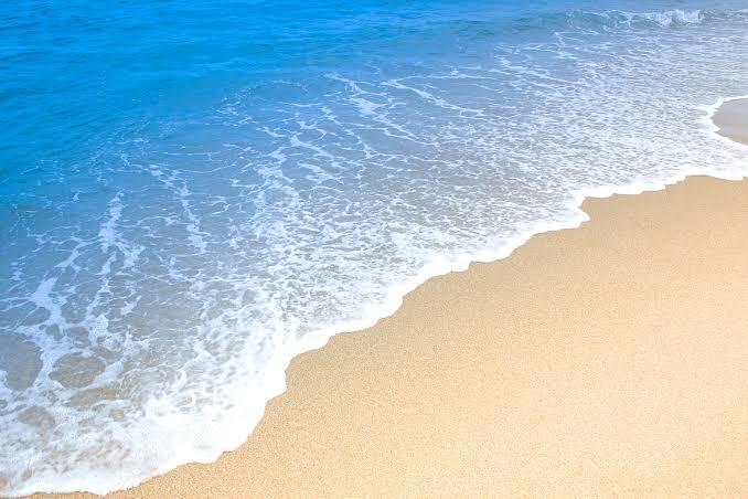 夜の海、波打ち際の危険について 質問失礼します!夜の海の波打ち際で友達と遊ぶことがあるのですが、最近海のことを調べていたら「ダツ」という魚を知りました! 調べてみると、光に向かって飛んでくるそ...