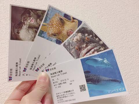 画像は拾ったものなんですけど、 海遊館に行くのにネット予約か当日受付しかなくて、ネット予約でもこの画像のチケット出てきますか??