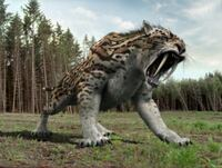 サーベルタイガー(スミロドン)が、下記の現存生物と1対1で闘ったら、勝てると思いますか? アフリカゾウ サイ カバ キリン ホッキョクグマ ヒグマ アムールトラ ライオン イリエワニ  オオアナコンダ ヘラジカ