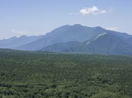 青木ヶ原の樹海(富士の樹海)を観光するには、どの様な場所がお勧めですか?